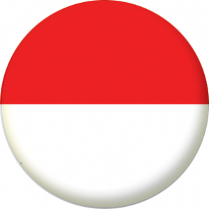 Indonesia Country Flag 58mm Mirror
